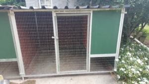 K9 (Canine) Dog Kennel